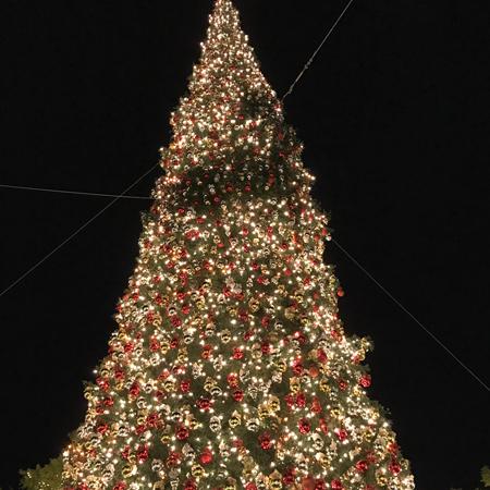 12月24日 クリスマス・イブ特別営業